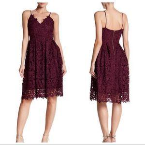 Fit & Flare Lace Knee Length Cocktail Dress Plum